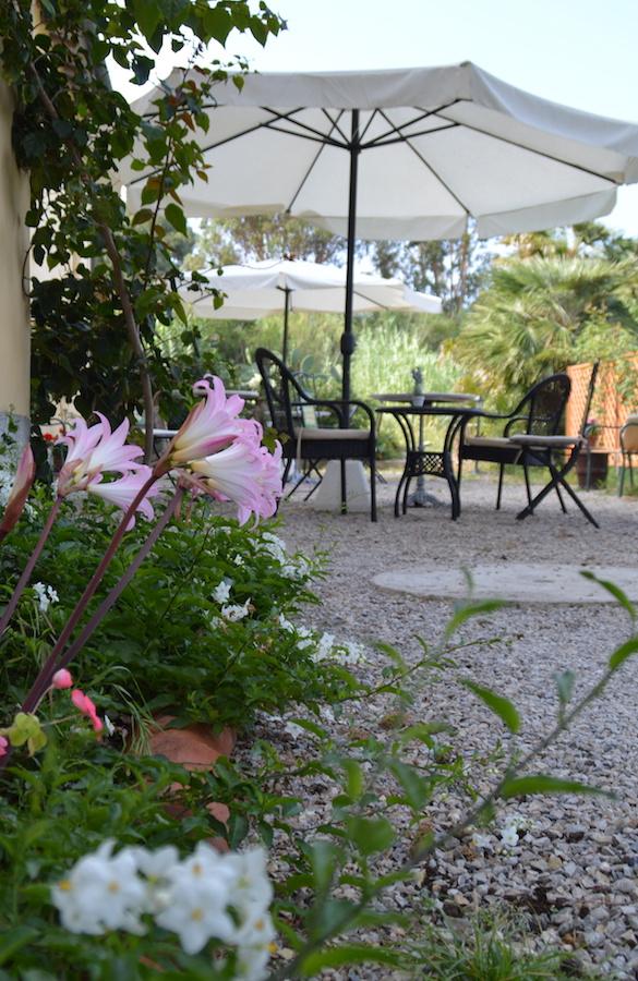 giardino-esterno